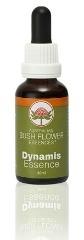dynamis-essence